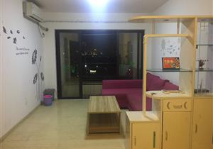 中海西岸华府 松岗地铁口物业 两房客厅出阳台