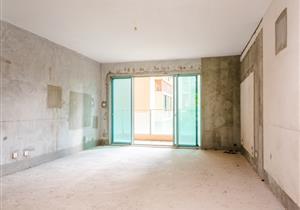 公园大地 毛坯5房 满5年 厅出阳台 有议价空间